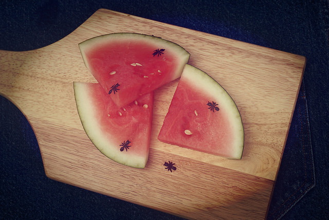 Fake ants on watermelon