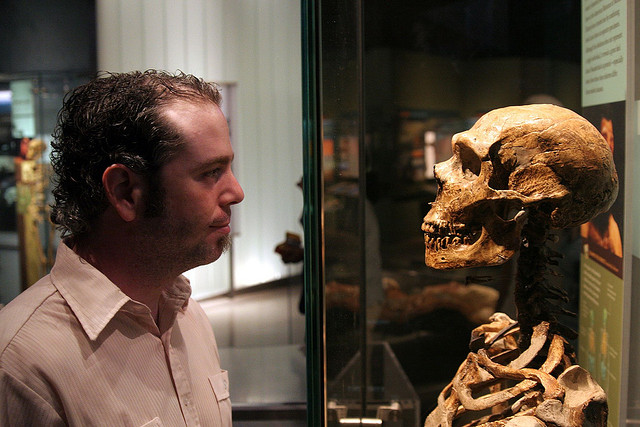 A human gazes at a possible ancestor